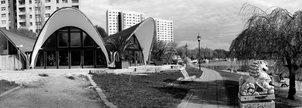 »Seerose« an der Neustädter Havelbucht  (Foto: ©H.Hajdu)